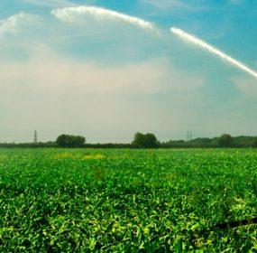 Agricultural Finance Program