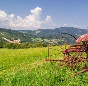 Farm Loans