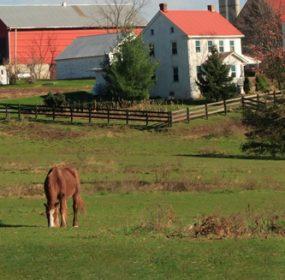 Equestrian Facilities Loans