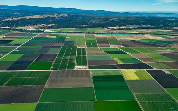 agricultural-financing-1.jpg