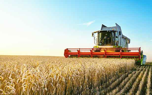 agricultural-loans-2.jpg